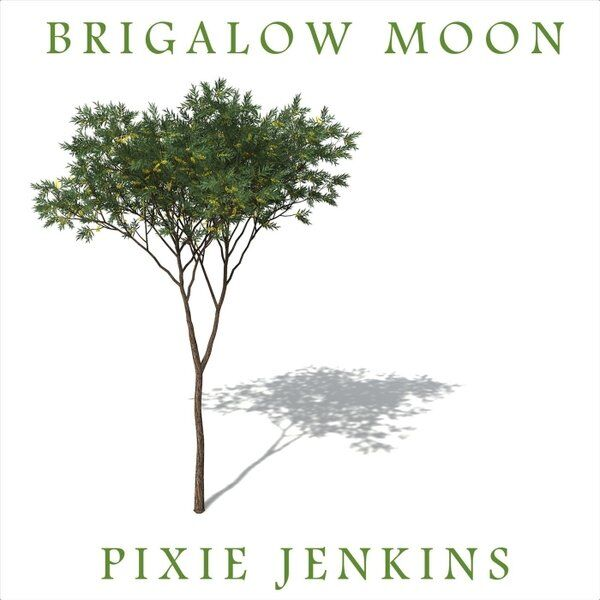 Cover art for Brigalow Moon